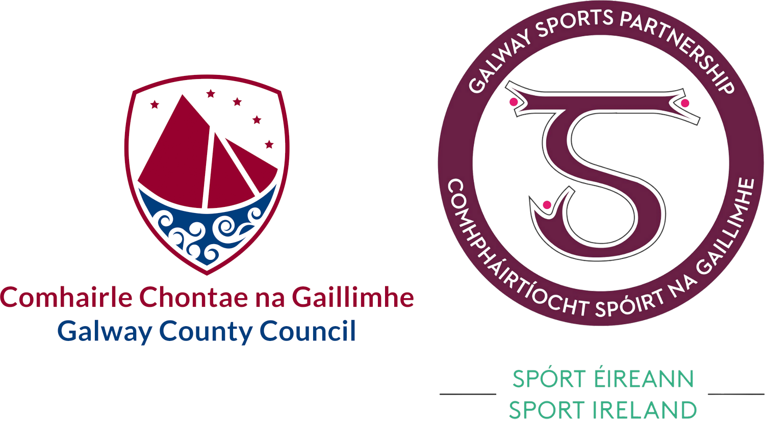 Galway County logo